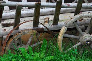 Karre mit Holzwurmbefall