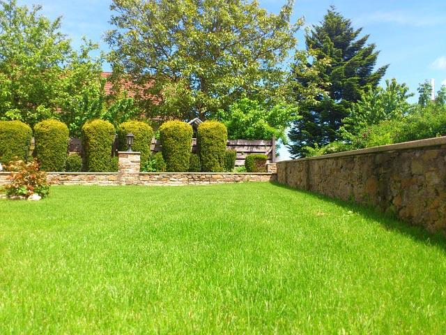 Rasen düngen mit organischen oder mineralischen Düngern